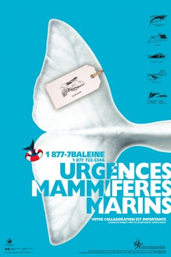 2011-Affiches-3-versions