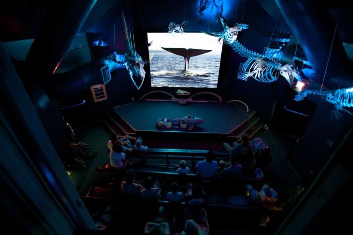 La salle de projection du CIMM