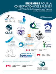 Conservation des baleines